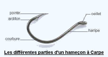 hamecon peche carpe